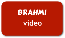 Brahmi Bacopa Monnieri video